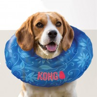 Collerette de convalescence pour chien - Collerette Cushion KONG