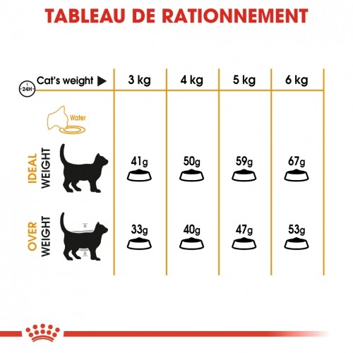 Alimentation pour chat - Royal Canin Hair & Skin Care pour chats