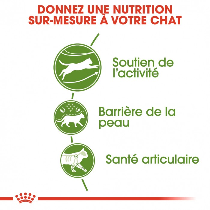 Alimentation pour chat - Royal Canin Outdoor pour chats