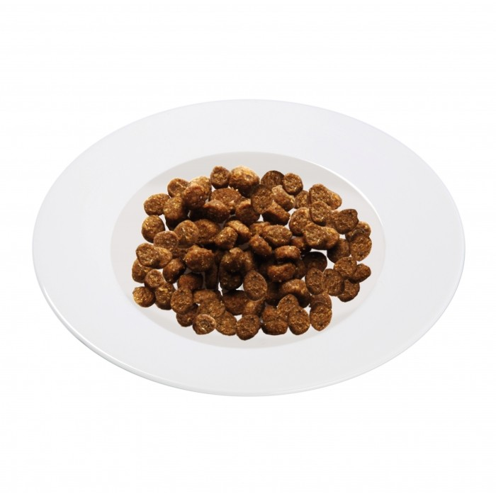 Alimentation pour chat - Schesir Kitten pour chats