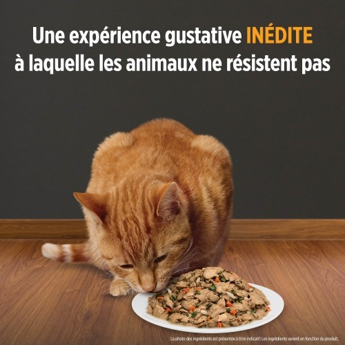 Alimentation pour chat - HILL'S Prescription Diet Metabolic - Pâtée pour chat pour chats