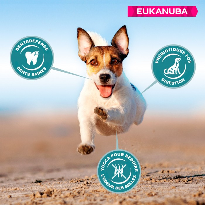 Alimentation pour chien - Eukanuba Active Adult Small Breed pour chiens