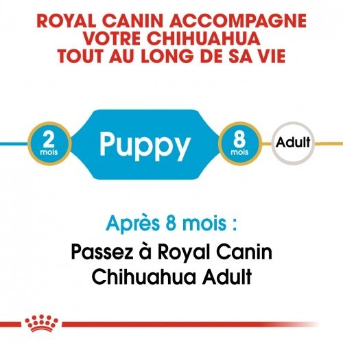 Alimentation pour chien - Royal Canin Chihuahua Puppy pour chiens