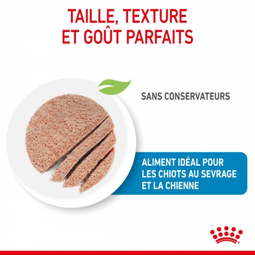 Alimentation pour chien - Royal Canin Starter Mother & Babydog pour chiens