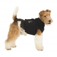 Vêtement de convalescence pour chien - Top Shirt 3 en 1 Medical Pet Shirt